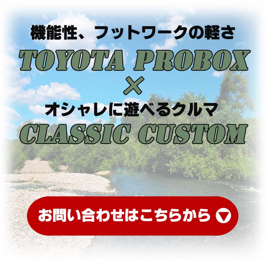 プロボックスクラシックカスタムパッケージ02-001
