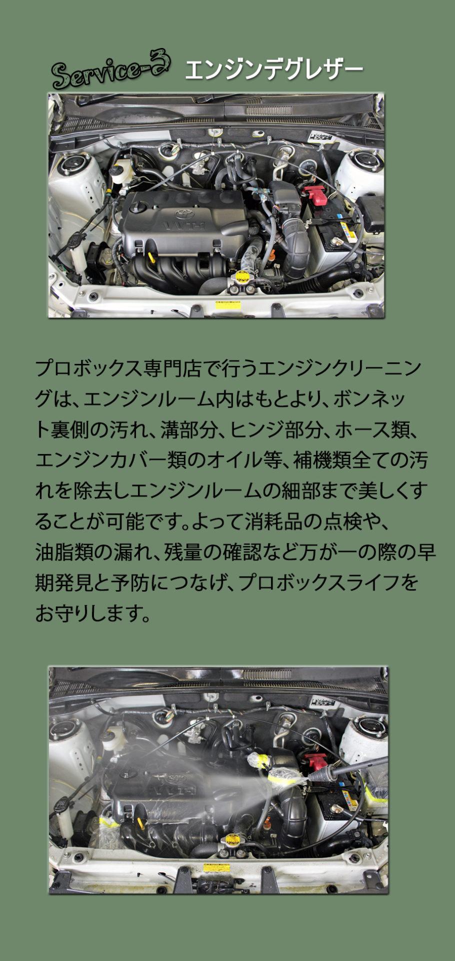 プロボックスLU55クラシックカスタムパッケージプレミアムサービスエンジンデグレザー
